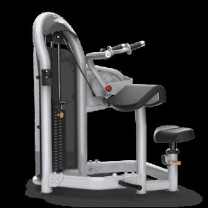 Matrix Triceps Extension - Aura Series